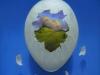 eggworld copy