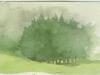 fogtrees150dpi
