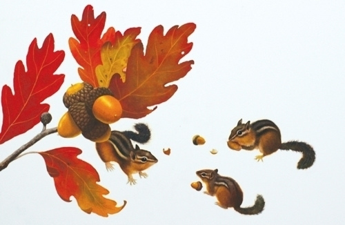 Chipmunks / The Busy Tree book art